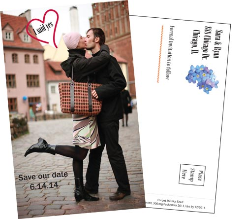 Digital Save the Date Forget-Me-Not Postcard Seed Packets