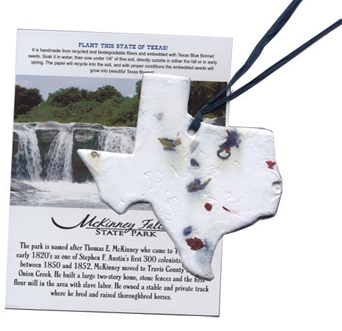 Texas Bluebonnet Seed Ornament with Insert Card