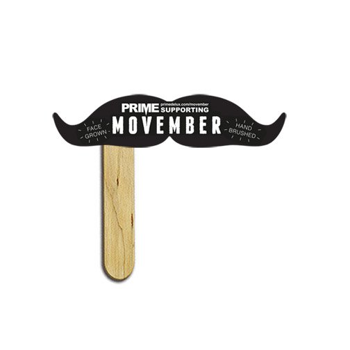 Vaudeville Mustache on a Stick