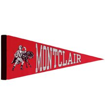 12 x 5 Woven Polyester Pennants