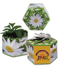 Garden Gems Paper Planters with Flowers