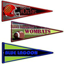 22 x 9 Full Color Embossed Aluminum Pennant Sign