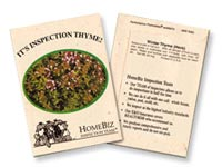 Winter Thyme Seed Packets